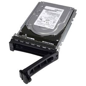 DELL 1TB 7_2K RPM Near-Line